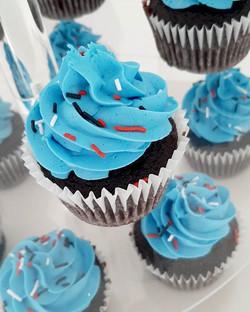 Chocolate cupcakes to match the Blaze an