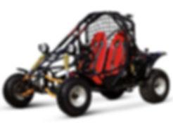 Vitacci Spider Go Kart.jpg
