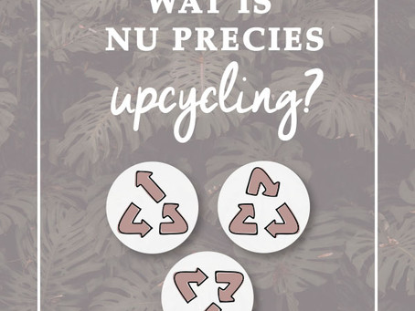 Wat is UPcycling?