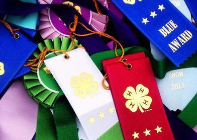 fair-ribbons.jpg