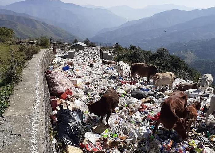 Waste trash garbage chakrata dehradun