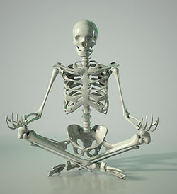 yoga-skeleton.jpg