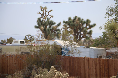Why you won't hear me complain much about Airbnbs around Joshua Tree