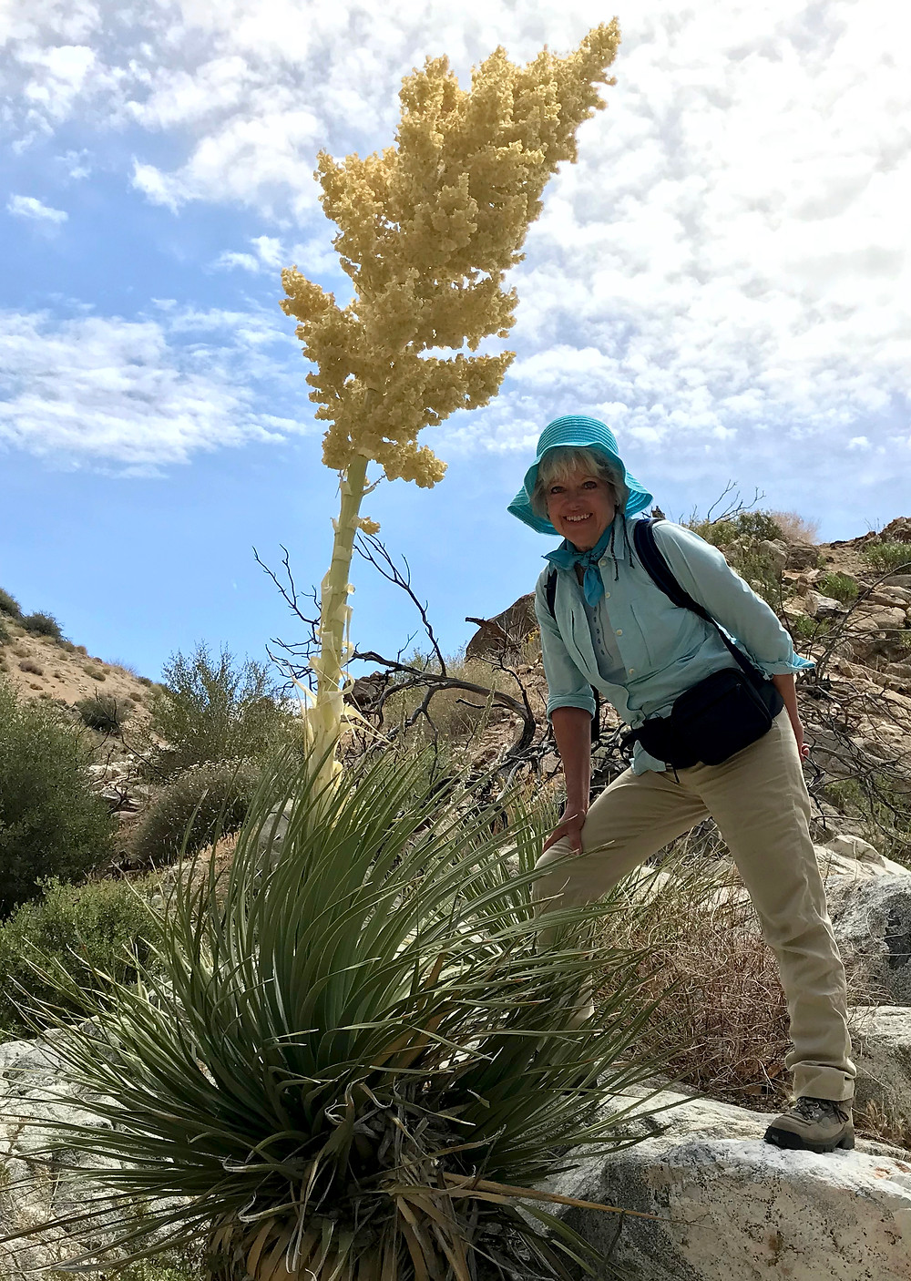 Desert botanist and plant ecologist, Robin Kobaly, with an ancient nolina.