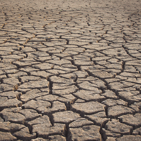 Action Alert: Release AB 1000 to protect California desert groundwater resources