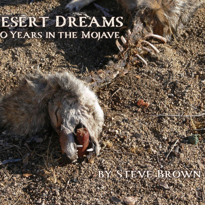 Desert Dreams: 20 Years in the Mojave