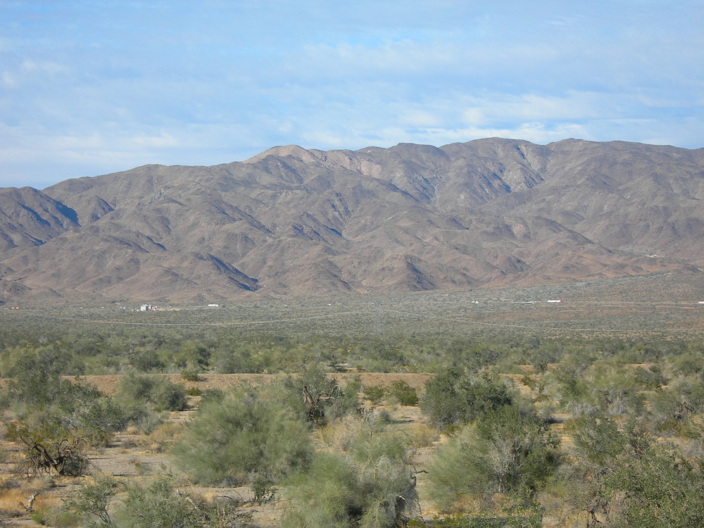 Site of the proposed new city of Paradise Valley, on the southern border of Joshua Tree National Park.