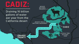 The Cadiz Water Project endangers the wildlife of the eastern Mojave Desert.