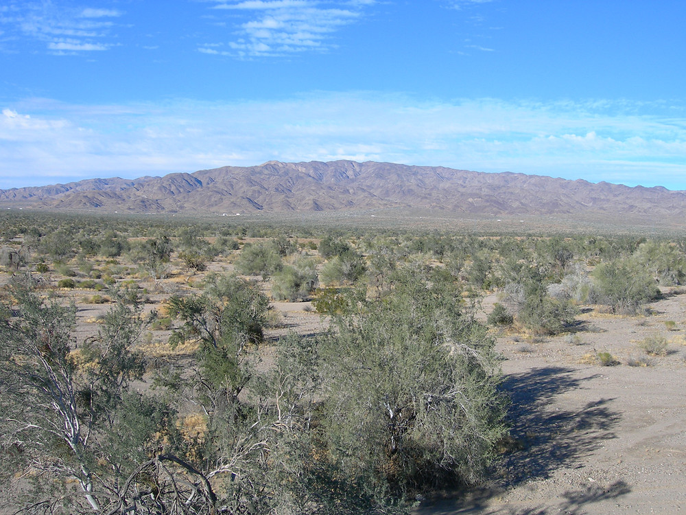 Paradise Valley, the new city planned for the southern border of Joshua Tree National Park, hit a stumbling block this week at the Riverside County Planning Commission hearing.