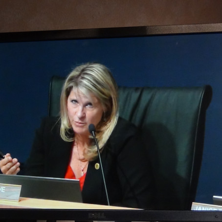 Supervisors unanimously approve Daggett Solar Power Project