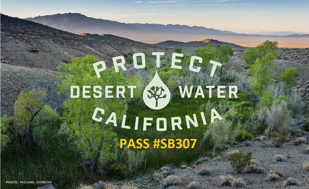 Support California Senate Bill SB 307 to protect the Mojave Desert's groundwater.