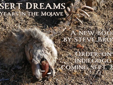 My book - Desert Dreams: 20 Years in the Mojave