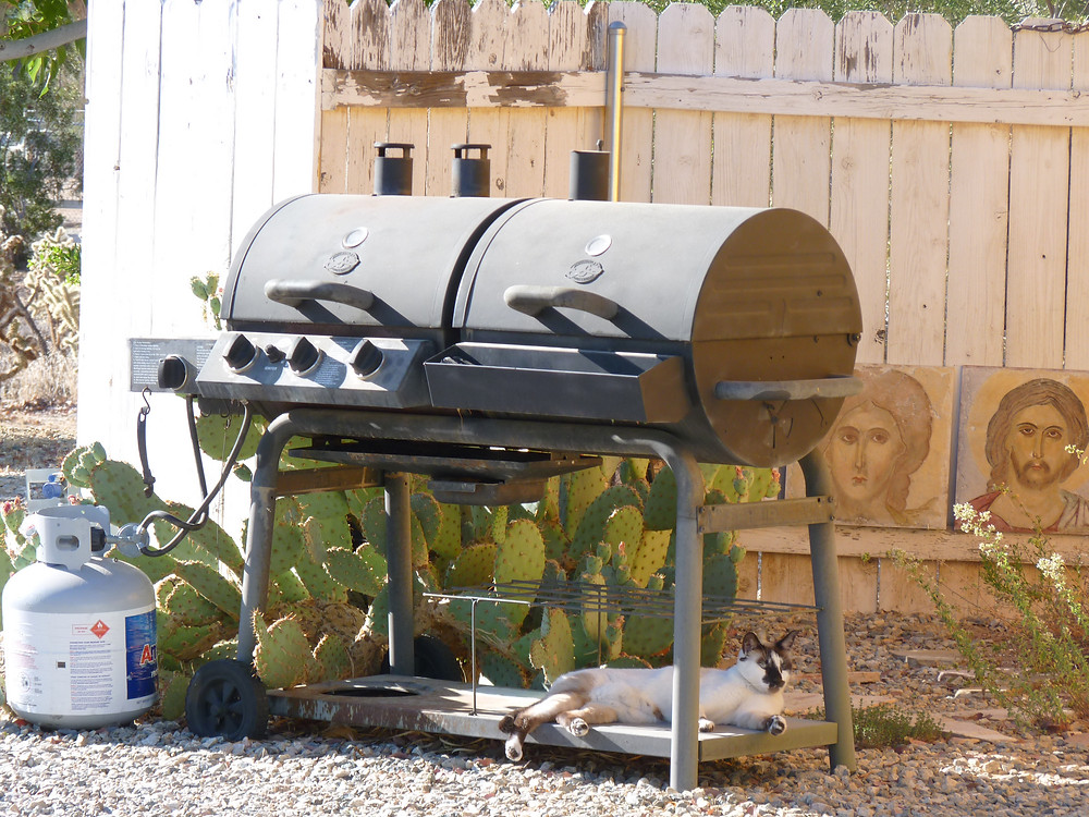 Safe under the barbecue!