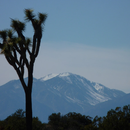 New bill introduced to protect and preserve California's deserts