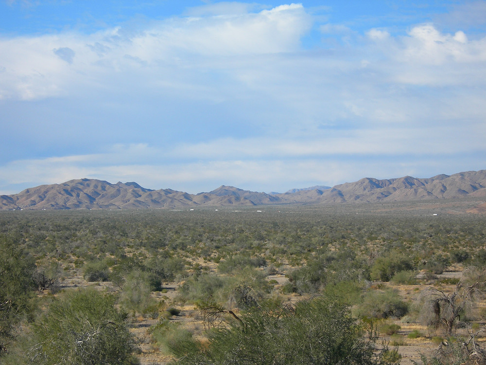 Looking north across the area slated for the proposed new city, Paradise Valley.