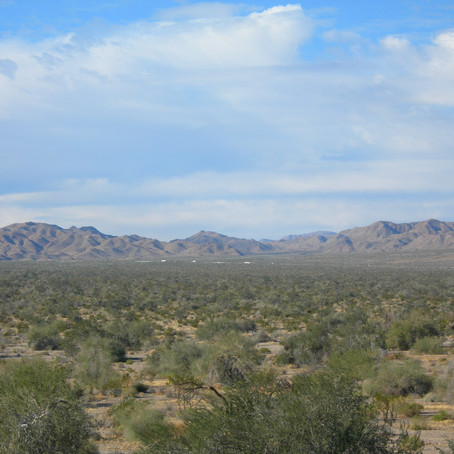 "Riverside County ""not able"" to recommend approval of Paradise Valley project"