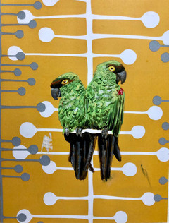 Two Parrots.jpg