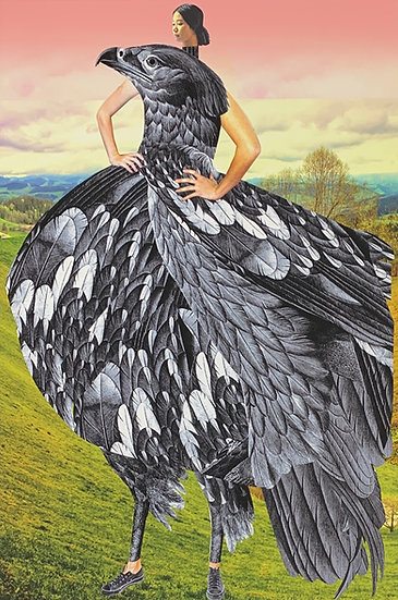 Catalog of Imaginary Beings: Plate #48 (Bird Dress)