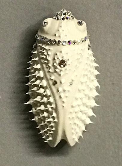 Cicada (White XS)