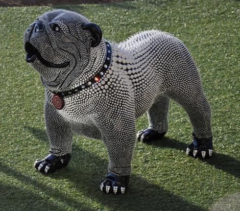 English Bulldog Black