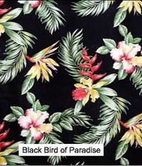 Black Bird of Parad