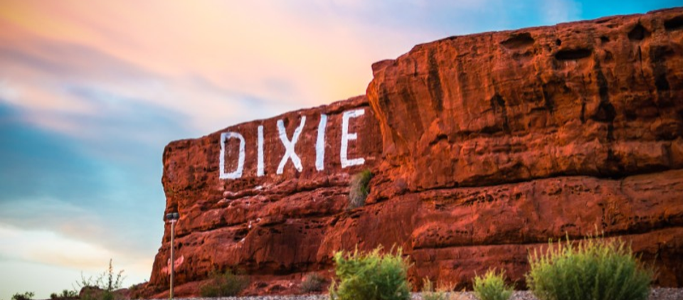 dixie pic.png