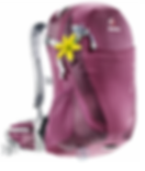 ROI Backpack.png
