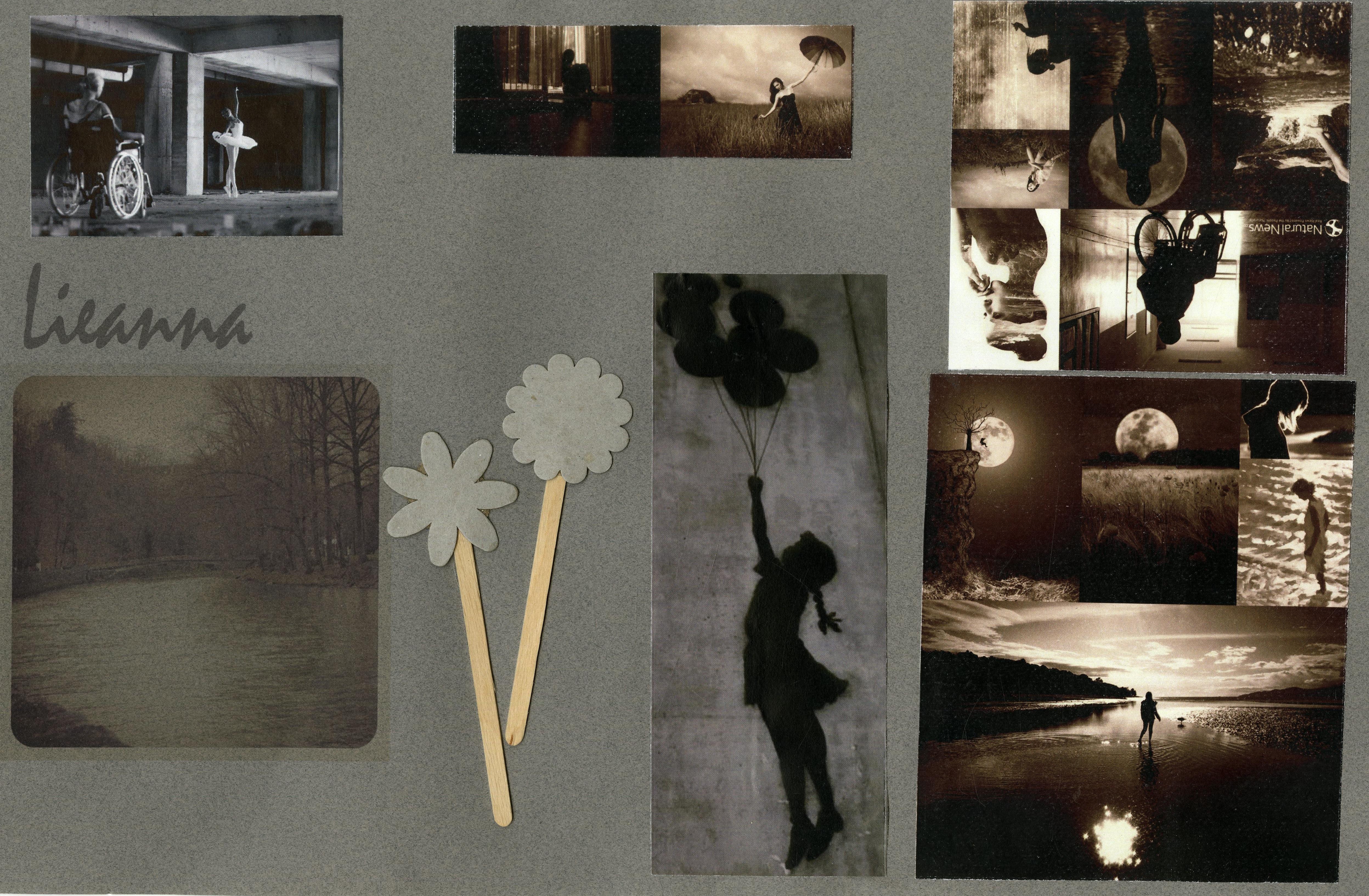Lieanne Collage