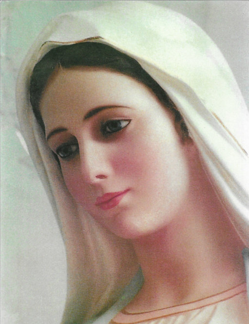 "Our Lady of Medjugorje 8 1/2"" x 11"""