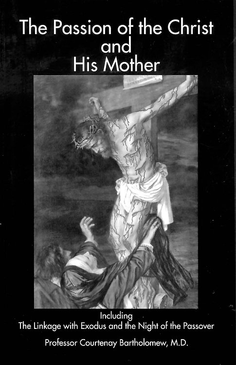 The Passion Of Christ & His Mother
