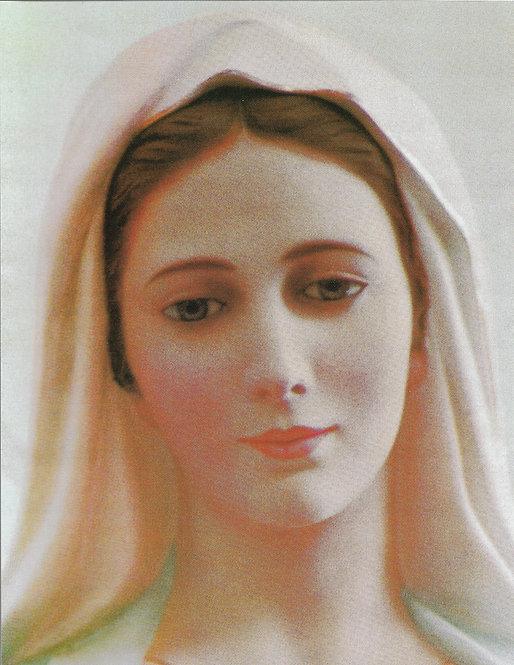 """Blessed Virgin 8 1/2"""" x 11"""""""
