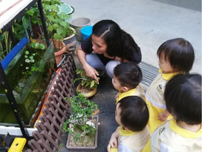 Why Teacher-Child Ratios Matter in Childcare Centres