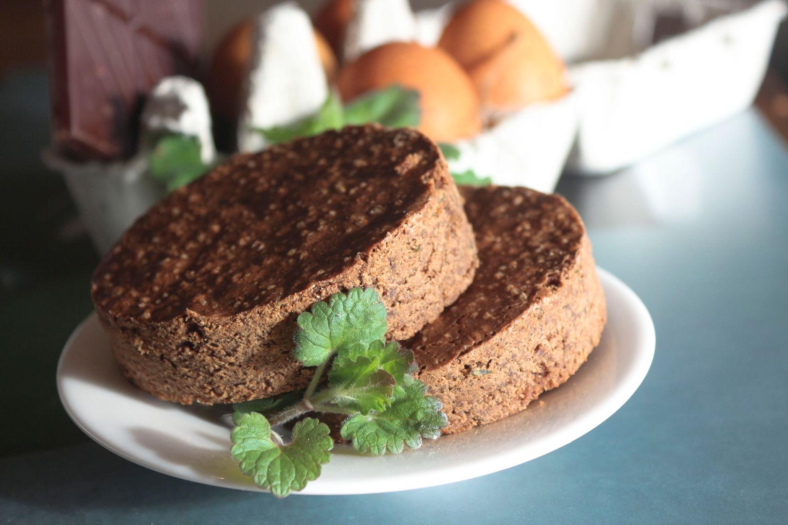 brownie lierre terrestre  hs.jpg
