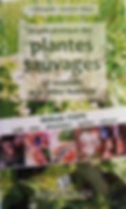 couverture guide pratique plantes sauvag