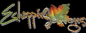 logo image ES 2016.png