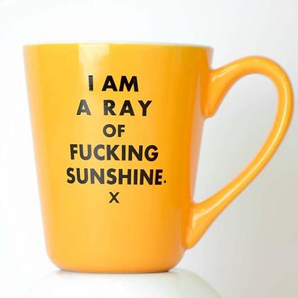 Ray of F*cking Sunshine Mug