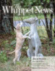 Blur on WN cover.jpg