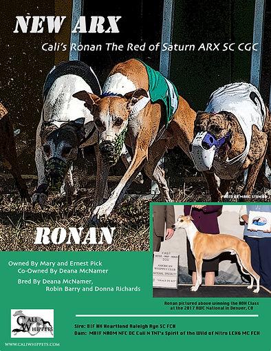 Ronan new arx final.jpg