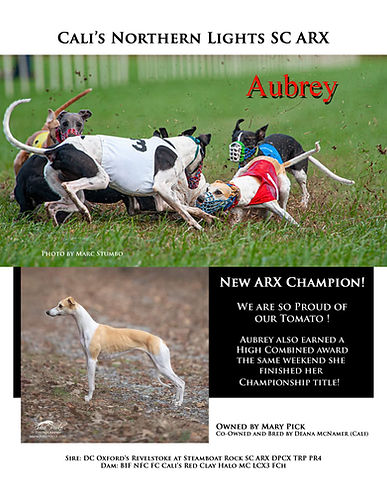 Aubrey new arx_edited-2.jpg