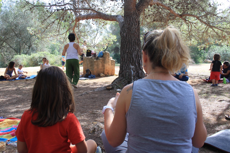 Jocs d'Atenció al Bosc de Bellver 14