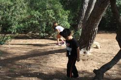Jocs al Bosc 2014
