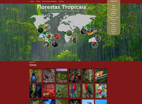 """Novo portal """"Florestas Tropicais"""" promove uma verdadeira viagem pelos locais mais ricos do"""