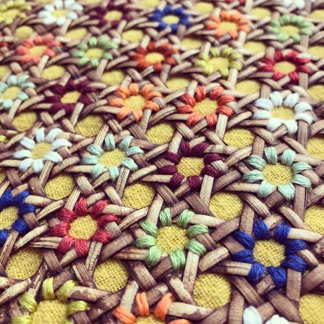 Marguerites colorées