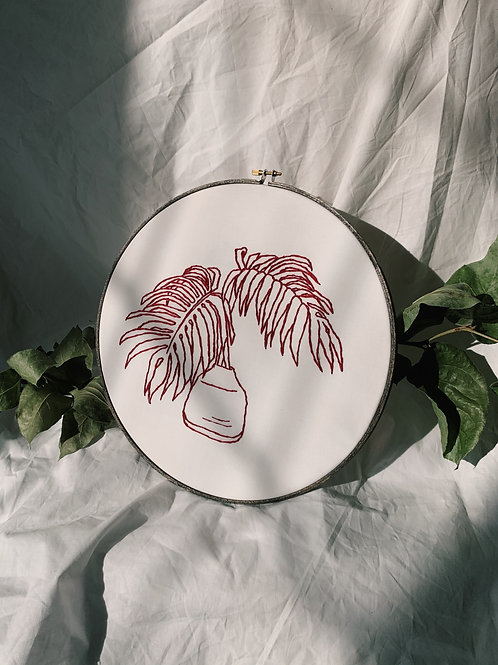 Red Philodendron