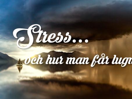 STRESS - NÄR BEHÖVER DU GÖRA EN FÖRÄNDRING