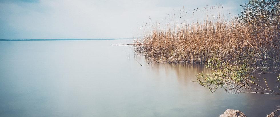 Background_lake.jpg