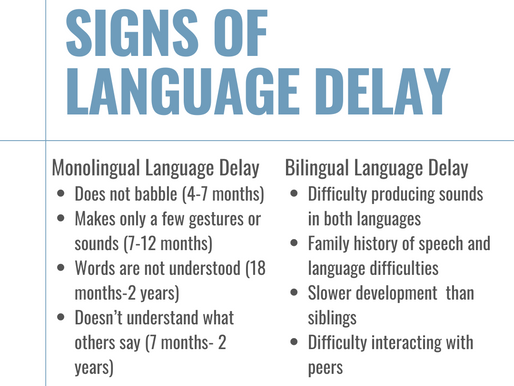 Signs of Language Delay
