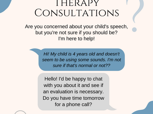 Rockford Speech Therapy Consultations