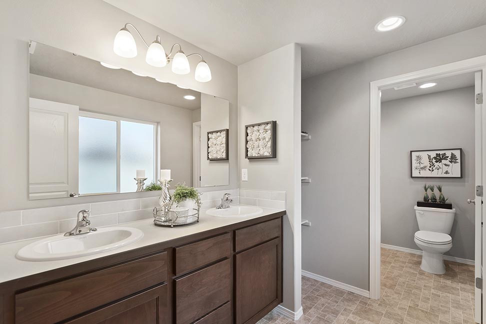 Dover-Master-Bathroom-web.jpg