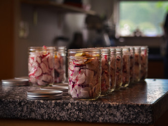 Making Spicy Pickled Radishes